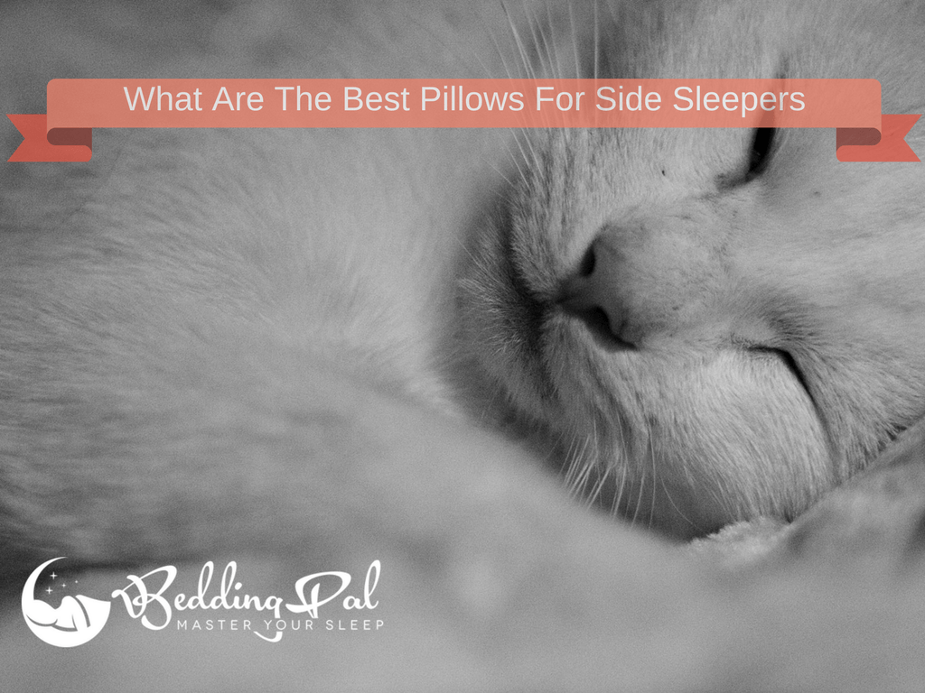 5 best pillows for side sleepers with detailed reviews